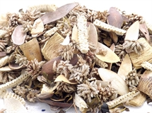 Hand Blended Pot pourri Coconut
