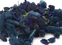 Hand Blended Pot pourri Cornflower